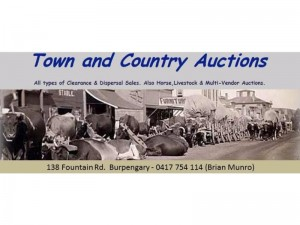 town n country auctions